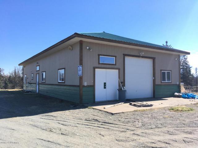21045 Starlight Street, Ninilchik, AK 99639 (MLS #17-10280) :: RMG Real Estate Experts