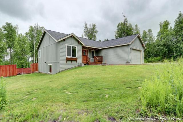 4860 Kianna Avenue, Wasilla, AK 99623 (MLS #17-10396) :: Channer Realty Group