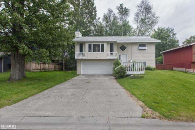 251 Lloyd Street, Palmer, AK 99645 (MLS #17-10407) :: Channer Realty Group