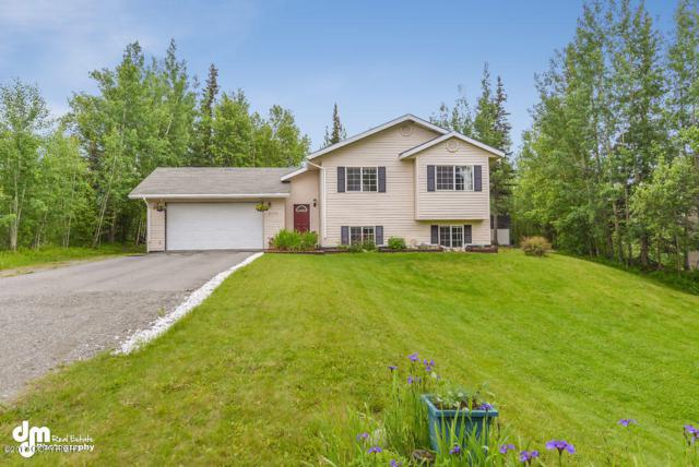 8760 E Times Square Circle, Palmer, AK 99645 (MLS #17-10423) :: Channer Realty Group