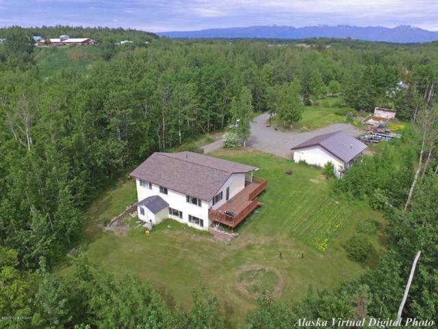 4160 E Linlu Lane, Wasilla, AK 99654 (MLS #17-10448) :: RMG Real Estate Experts