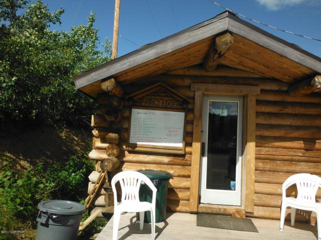 L8-9 Hill Top Road, Healy, AK 99743 (MLS #17-10613) :: Roy Briley Real Estate Group