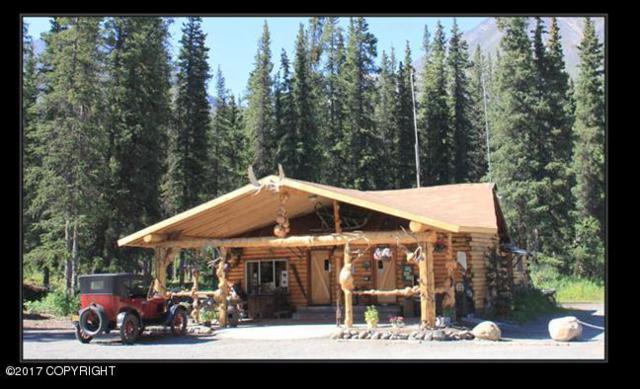 Mi 224 George Parks Highway, Healy, AK 99755 (MLS #17-10811) :: Northern Edge Real Estate, LLC