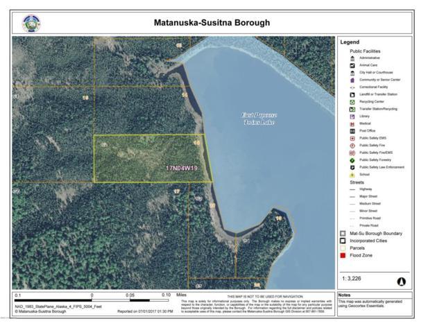 LC2 East Papoose Twins Lake, Big Lake, AK 99652 (MLS #17-11008) :: Real Estate eXchange
