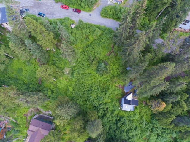 351 Echo Ridge Drive, Girdwood, AK 99587 (MLS #17-11273) :: Northern Edge Real Estate, LLC