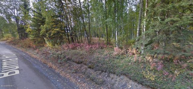 4628 S Burma Road, Big Lake, AK 99652 (MLS #17-11650) :: Real Estate eXchange