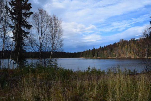 48748 Gruber Road, Soldotna, AK 99669 (MLS #17-12295) :: Real Estate eXchange