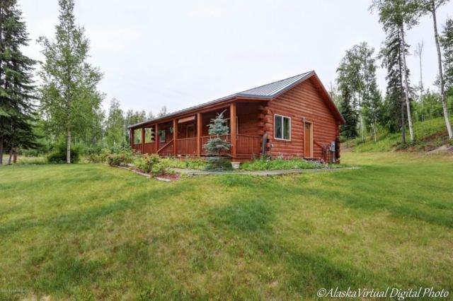 1420 S Sky Hill Place, Big Lake, AK 99652 (MLS #17-12363) :: Real Estate eXchange