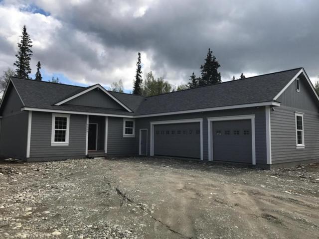 6480 N Farm Loop Road, Palmer, AK 99645 (MLS #17-12466) :: Real Estate eXchange