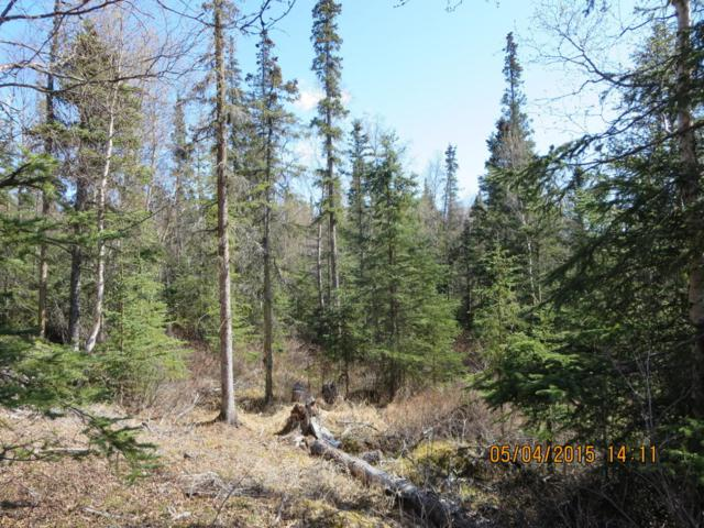 Lot 4 Rabbit Creek Road, Anchorage, AK 99516 (MLS #17-12483) :: RMG Real Estate Experts