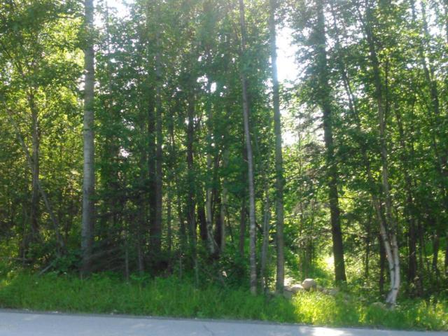 11834 N Wright Way, Sutton, AK 99674 (MLS #17-13042) :: RMG Real Estate Experts