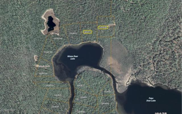 Tr S Mama Bear Lake, Talkeetna, AK 99676 (MLS #17-13384) :: Real Estate eXchange