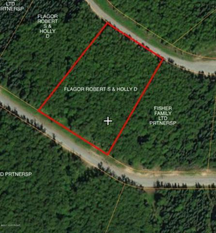 L4 B3 W Angies Drive, Wasilla, AK 99654 (MLS #17-13930) :: RMG Real Estate Experts