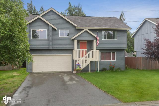 1250 W Josselin Lane, Palmer, AK 99645 (MLS #17-14013) :: RMG Real Estate Experts