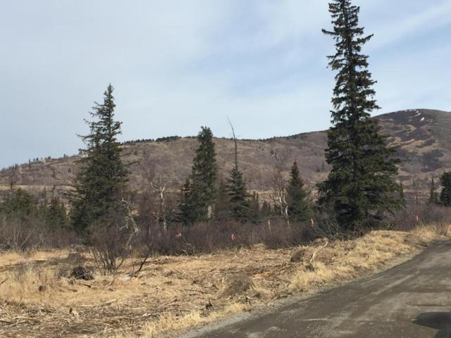 L14 B3 Potter Highlands Drive, Anchorage, AK 99516 (MLS #17-14209) :: RMG Real Estate Experts