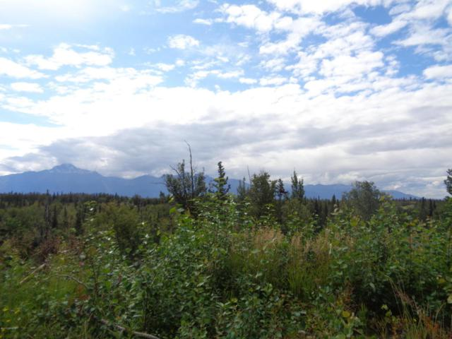 1800 S Low Road, Palmer, AK 99645 (MLS #17-14252) :: Channer Realty Group