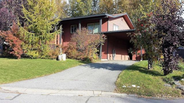176 Ocean Park, Anchorage, AK 99515 (MLS #17-14294) :: RMG Real Estate Experts