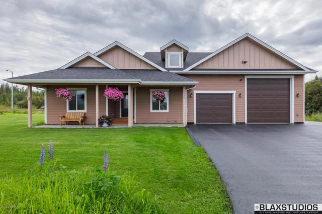 9090 E Silver Spring Circle, Palmer, AK 99645 (MLS #17-14359) :: Channer Realty Group