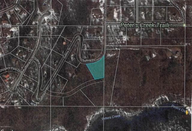 L6 B4 Sullins Drive, Chugiak, AK 99567 (MLS #17-14455) :: Northern Edge Real Estate, LLC