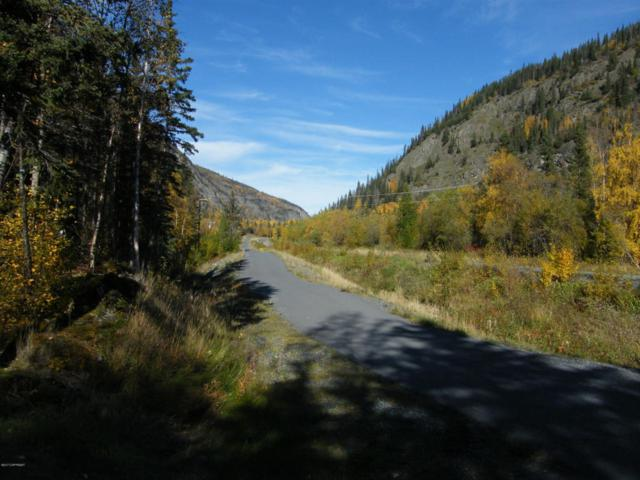 Mile 33.5 Edgerton Highway, Chitina, AK 99566 (MLS #17-14460) :: Channer Realty Group