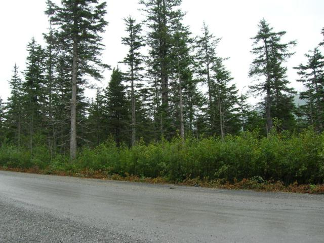 Lot 3 Shotgun Cove Road, Whittier, AK 99693 (MLS #17-14536) :: Channer Realty Group
