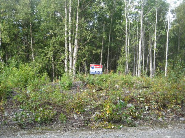 20362 N Granite Creek Ranch Road, Sutton, AK 99674 (MLS #17-15020) :: RMG Real Estate Experts