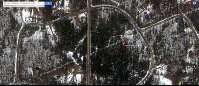 14017 W Cheshire Circle, Houston, AK 99694 (MLS #17-15165) :: Real Estate eXchange