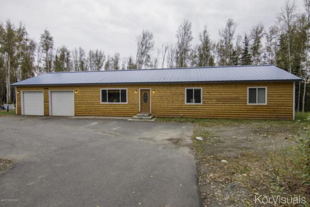 13194 W Cheri Lake Drive, Houston, AK 99694 (MLS #17-15453) :: Real Estate eXchange