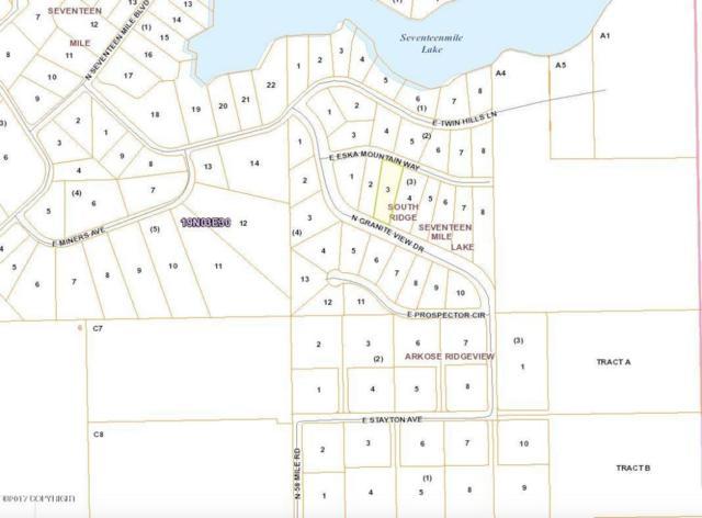 18200 E Eska Mountain Way, Sutton, AK 99674 (MLS #17-1584) :: RMG Real Estate Experts