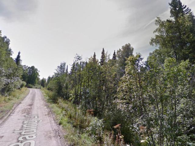16120 N Bading Lane, Willow, AK 99688 (MLS #17-15967) :: Real Estate eXchange