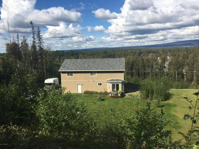 6260 W Locksley Loop, Wasilla, AK 99654 (MLS #17-16008) :: Real Estate eXchange