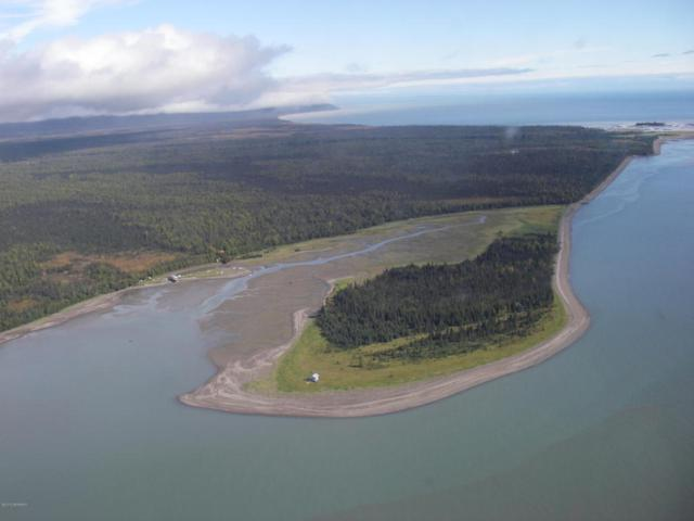 L2 Tuxedni Bay, Remote, AK 99000 (MLS #17-16124) :: Wolf Real Estate Professionals