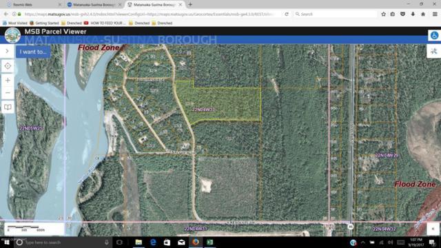 49347 S Resolute Drive, Willow, AK 99688 (MLS #17-16302) :: Real Estate eXchange