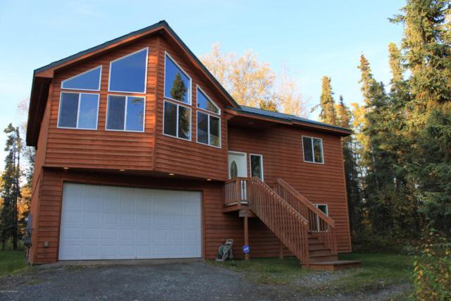 9767 W Rosehill Drive, Wasilla, AK 99654 (MLS #17-16353) :: Real Estate eXchange