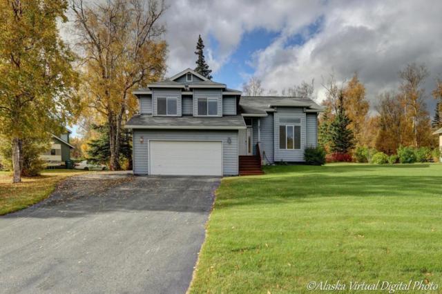 2132 N Verde Drive, Palmer, AK 99645 (MLS #17-16360) :: Real Estate eXchange