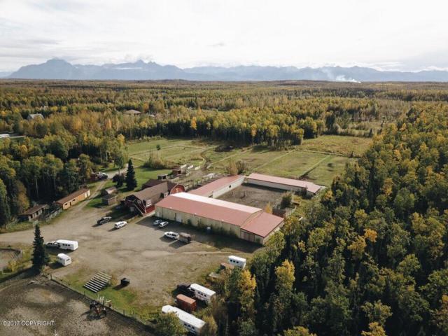 4652 N Bluegrass Lane, Wasilla, AK 99654 (MLS #17-16393) :: RMG Real Estate Experts