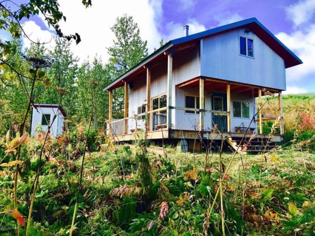 53411 Cottonwood Hill Avenue, Homer, AK 99603 (MLS #17-16520) :: Real Estate eXchange