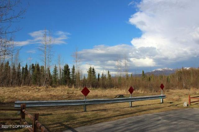 Address Not Published, Remote, AK 99613 (MLS #17-17416) :: Channer Realty Group