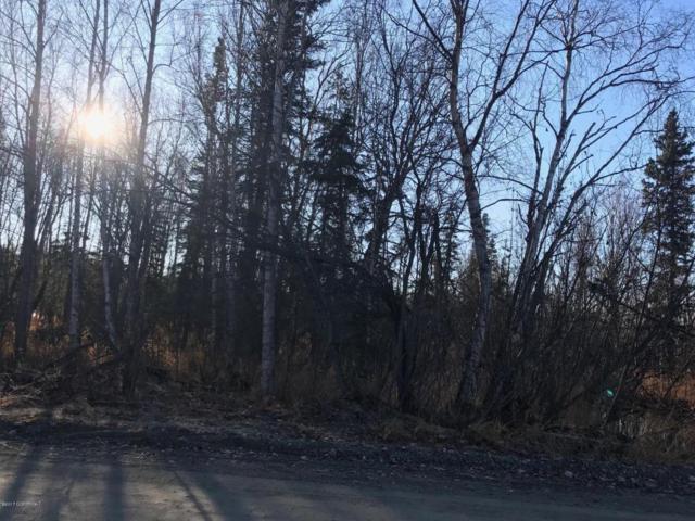 5352 W Wild Iris Avenue, Wasilla, AK 99654 (MLS #17-17493) :: Northern Edge Real Estate, LLC