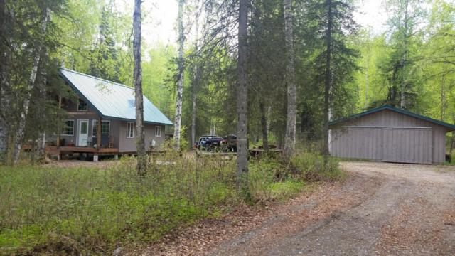 10589 N Credo Drive, Willow, AK 99688 (MLS #17-17566) :: Channer Realty Group