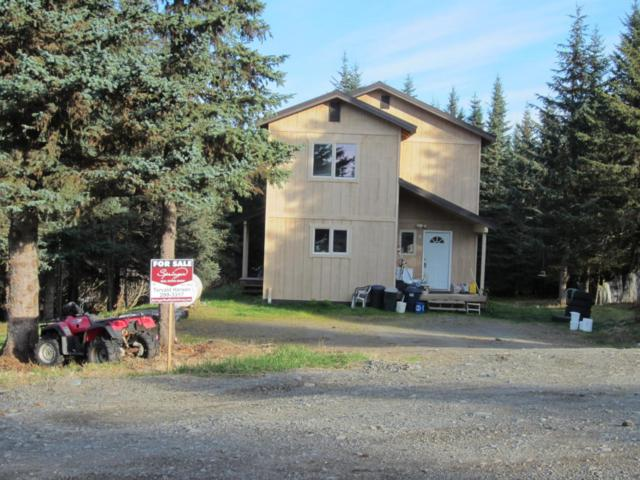 41282 Skittles Street, Homer, AK 99603 (MLS #17-17647) :: Channer Realty Group