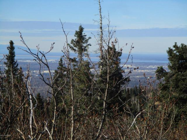 L12 Mount Mckinley Drive, Anchorage, AK 99516 (MLS #17-17714) :: RMG Real Estate Experts