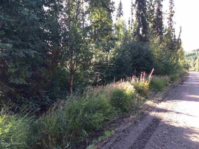 NHN Red Berry Road, Fairbanks, AK 99709 (MLS #17-17776) :: Team Dimmick