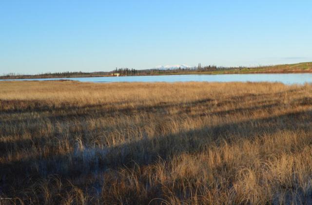 4082 Pond Lily Lane, Wasilla, AK 99654 (MLS #17-17801) :: RMG Real Estate Experts