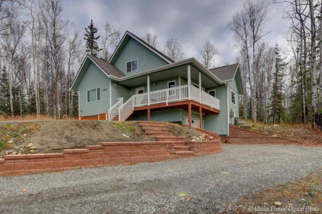 1563 N Ravens Best Circle, Wasilla, AK 99654 (MLS #17-17857) :: RMG Real Estate Experts