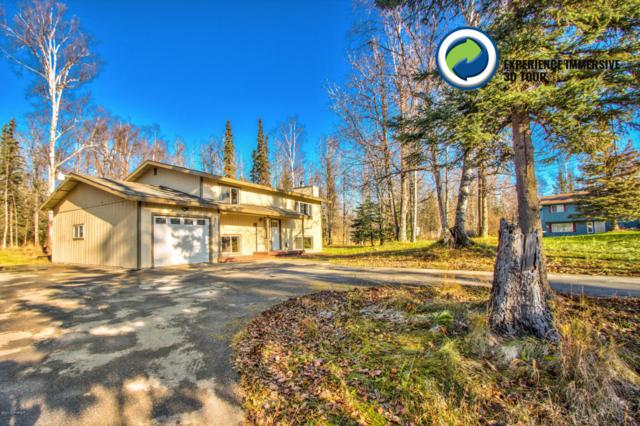 425 W Gail Drive, Wasilla, AK 99654 (MLS #17-17874) :: RMG Real Estate Experts