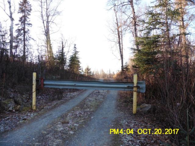 21098 S Parks Highway, Trapper Creek, AK 99683 (MLS #17-17891) :: RMG Real Estate Experts