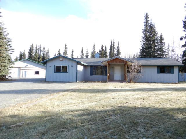 33450 Green Lane, Soldotna, AK 99669 (MLS #17-17895) :: RMG Real Estate Experts