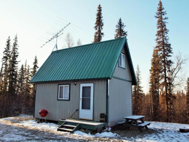 35211 S Kavik Road, Talkeetna, AK 99676 (MLS #17-18404) :: RMG Real Estate Experts