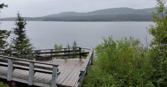 44827 Caribou Lake Rem, Homer, AK 99603 (MLS #17-18650) :: Channer Realty Group